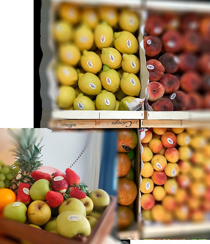 distribución de materias primas alimentos Murcia