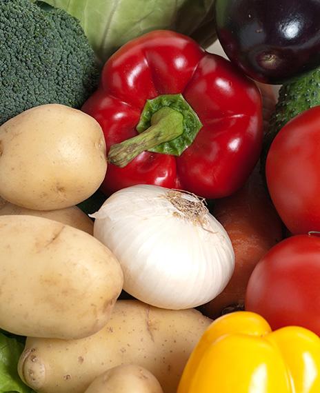 distribución materias primas cocinas profesionales Diloa